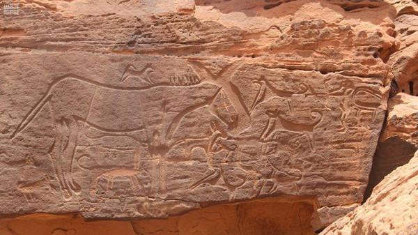 چٹانوں پر کندہ کاری، سعودیہ میں ہزاروں سال پرانے انسانی تہذیب کے ان منٹ نقوش