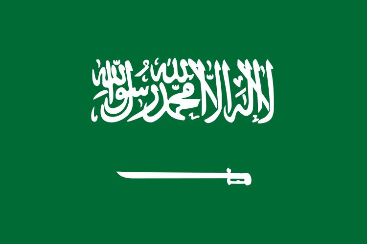 सऊदी अरब में एक और लेखक आलोचना की वजह से जेल में